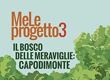 Mele Progetto 3 - Il bosco delle meraviglie: Capodimonte